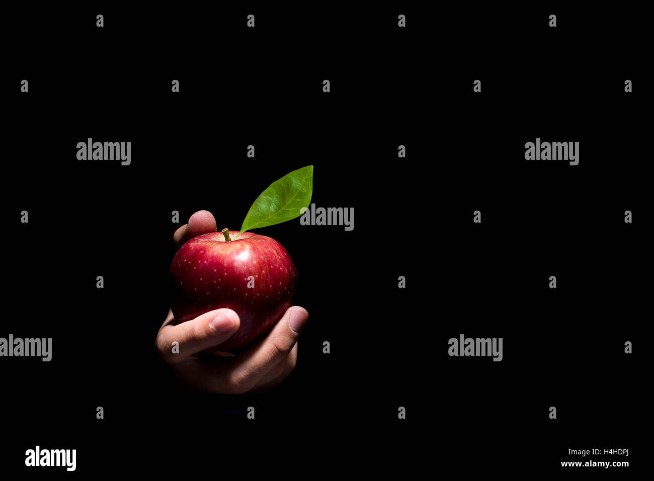 hand offering a red apple on a black background stock photo