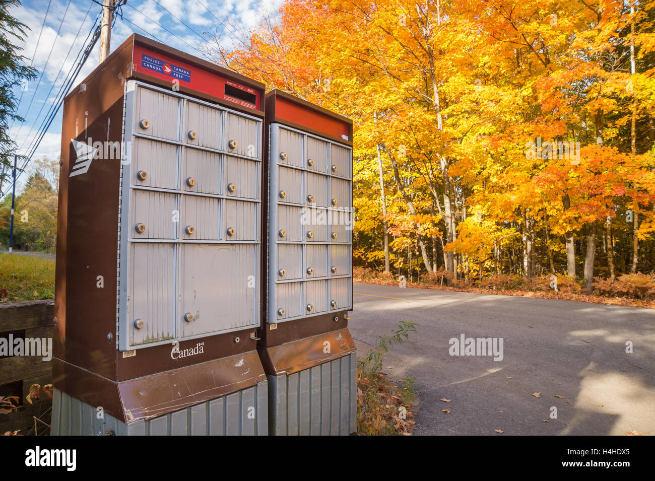 Canada Post Rural Group Mailboxes In Laurentides, in Autumn - Stock Image