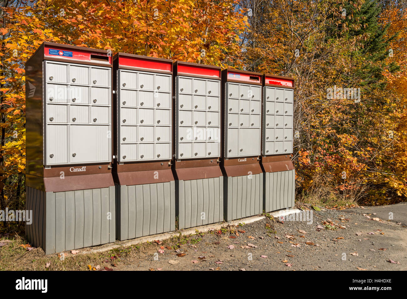Rural Canada Post Mailboxes In Laurentides, QC, CANADA,  in Autumn - Stock Image