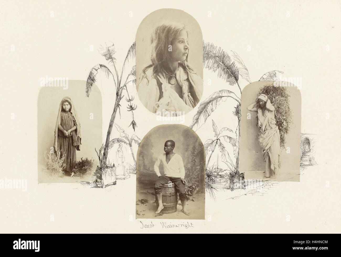 India, genre portrait of veiled girl drawing lined by palm trees, Anonymous - Stock Image