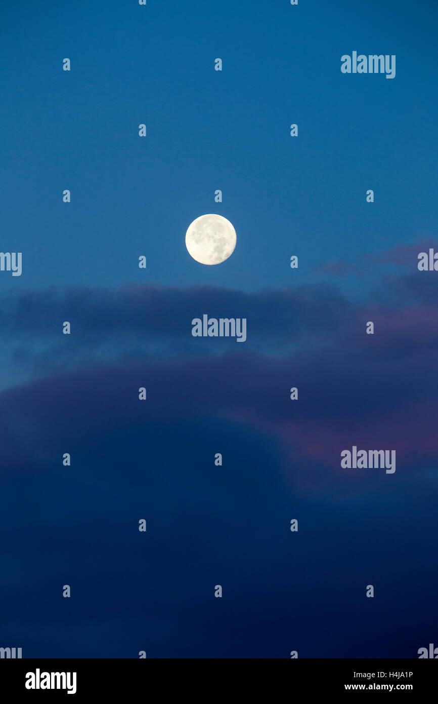 Full moon as seen in Sandbach Cheshire UK - Stock Image