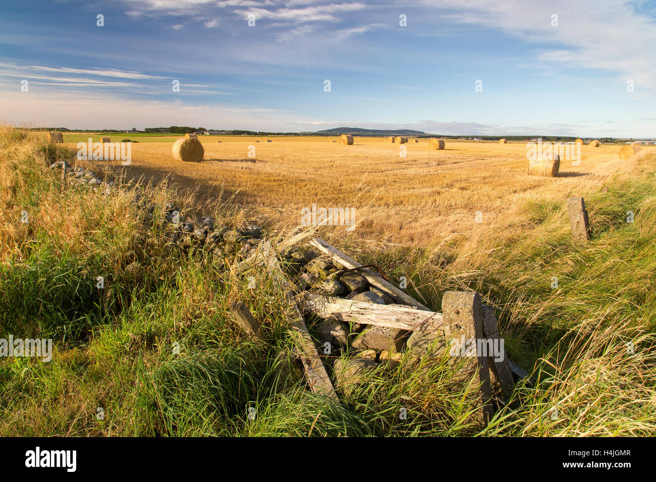 Hay bales in field with broken wall and fence agriculture farming UK - Stock Image