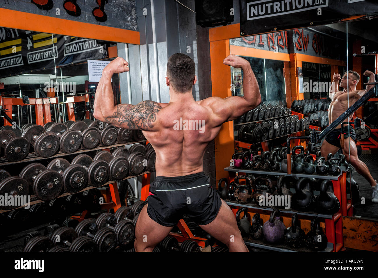 bodybuilder doing competition poses and showing defined back and arm muscles - Stock Image