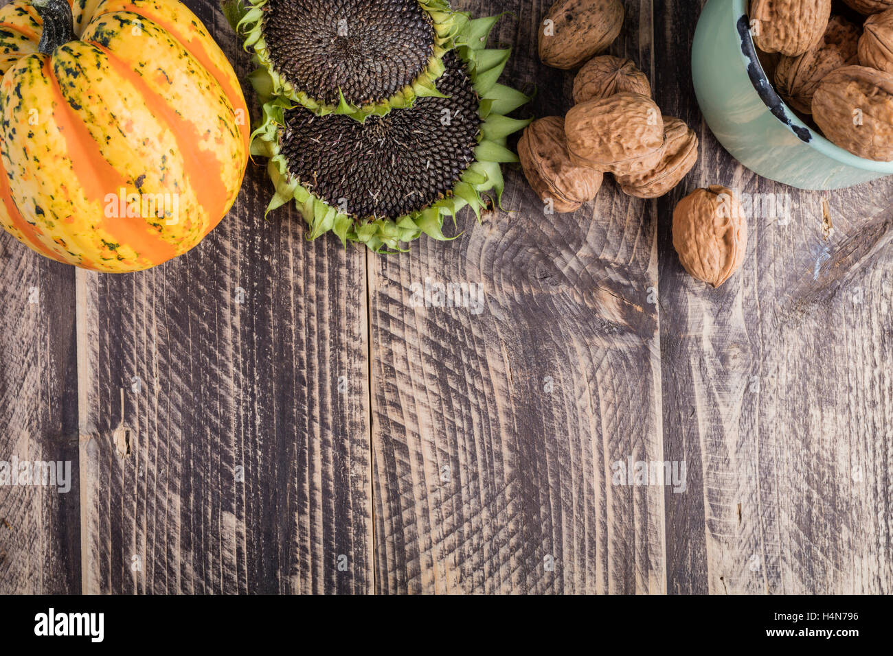 fall autumn thanksgiving decoration harvest wood wooden rustic background text space copy-space text-space colorful - Stock Image