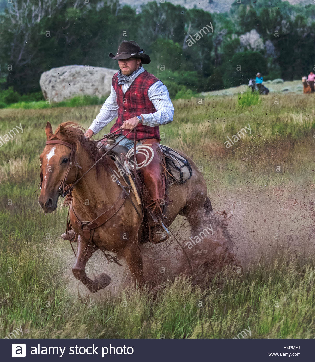 A cowboy riding his horse on the CM Ranch. - Stock Image