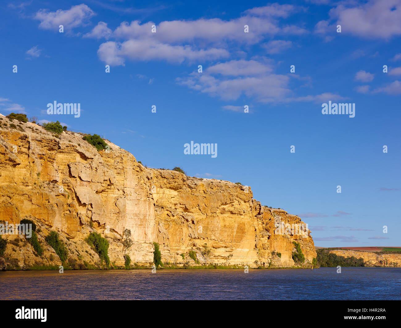 Bank of Murray River at Walker Flat on the lower reaches of the Murray darling Basin, South Australia. - Stock Image