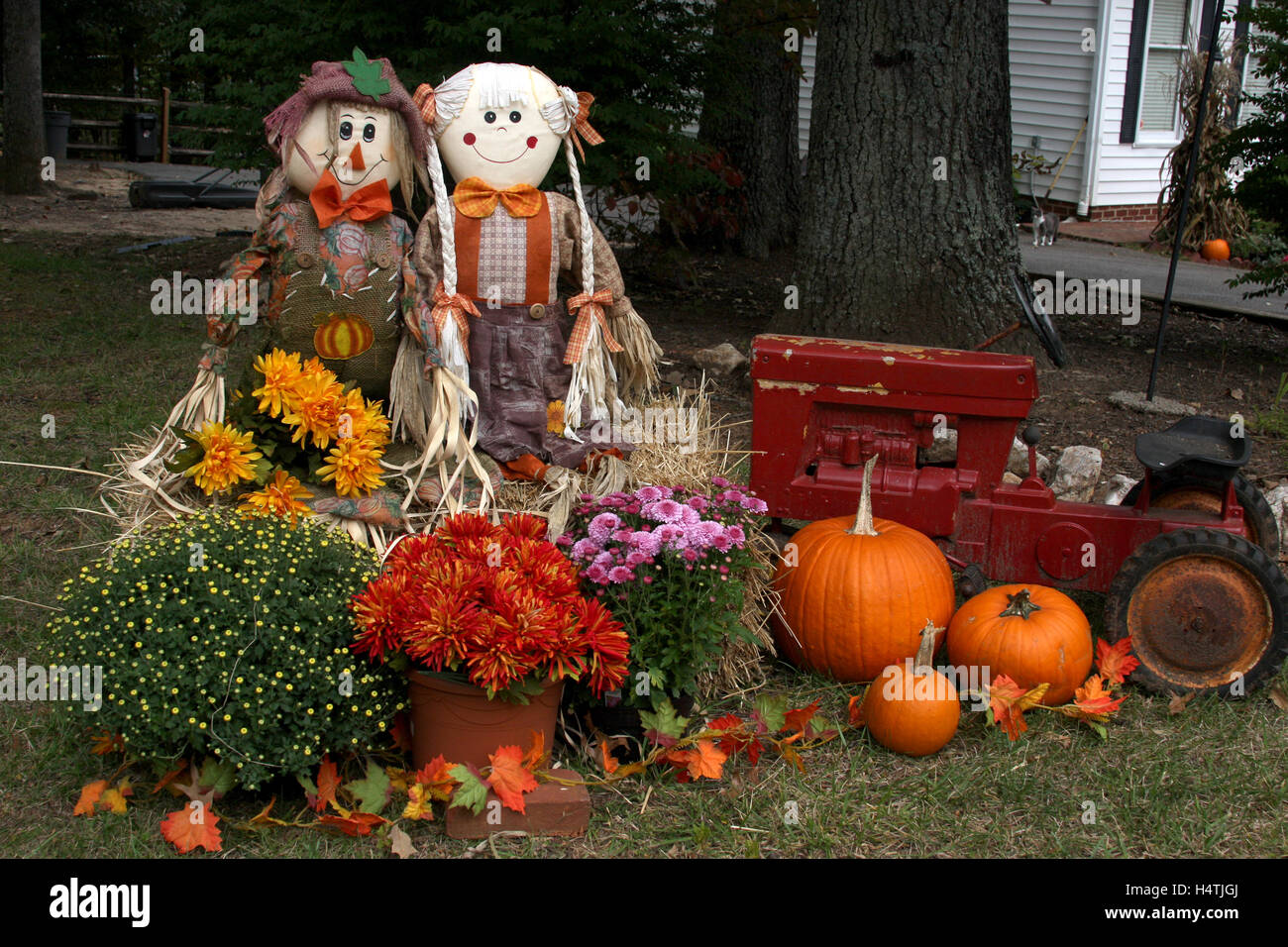 Outdoor Fall Decoration With Scarecrows Mums Tractor And Pumpkins