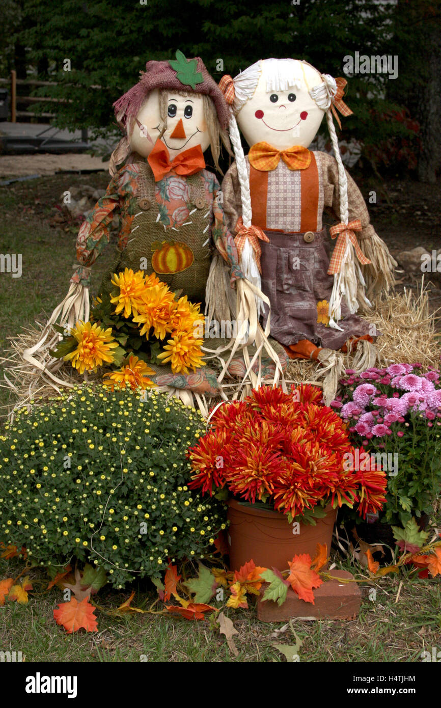 Outdoor Fall Decoration With Scarecrows And Mums Stock Photo
