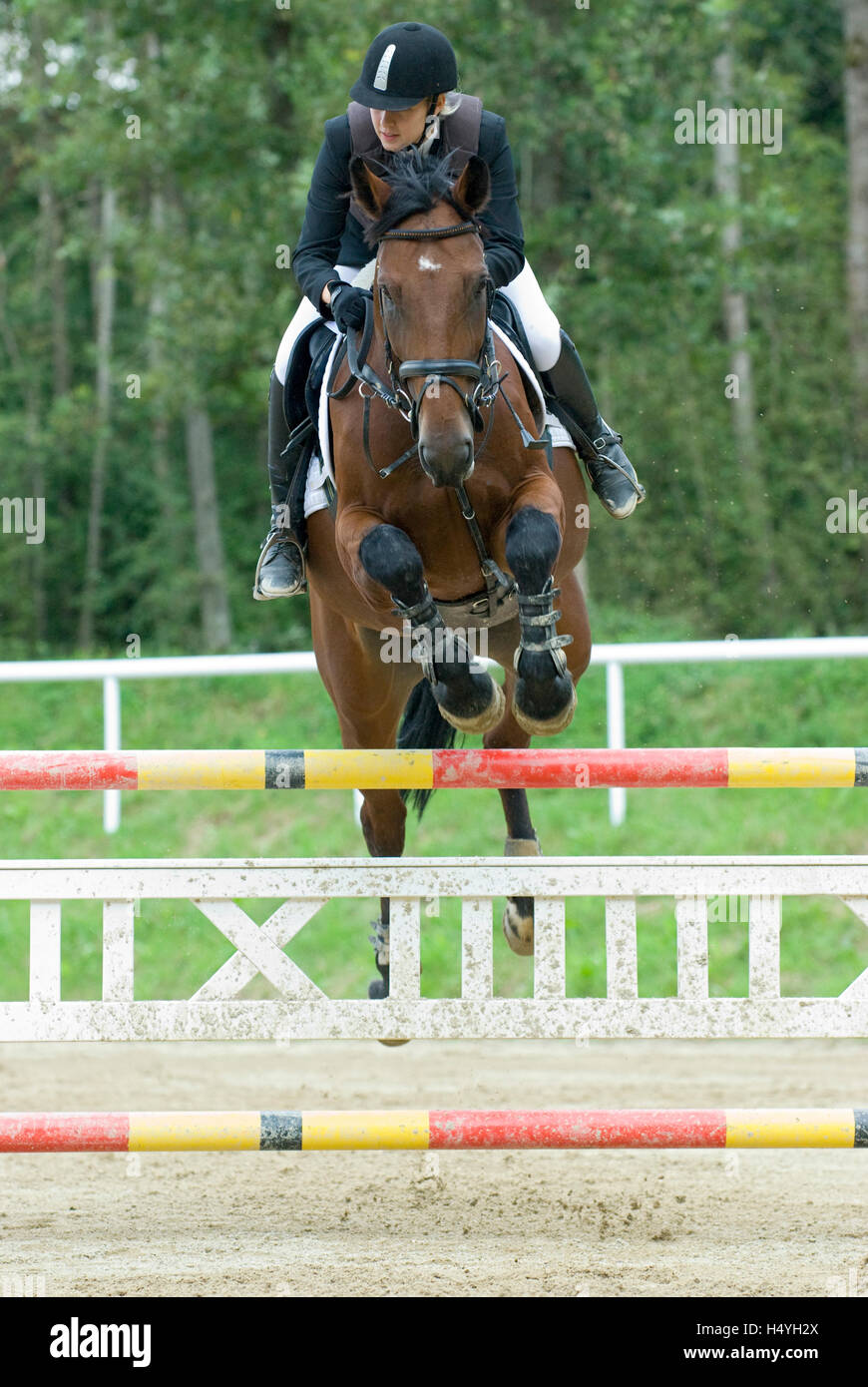 Showjumping, anniversary event of rural riders in Stadl Paura, Upper Austria, Austria, Europe - Stock Image