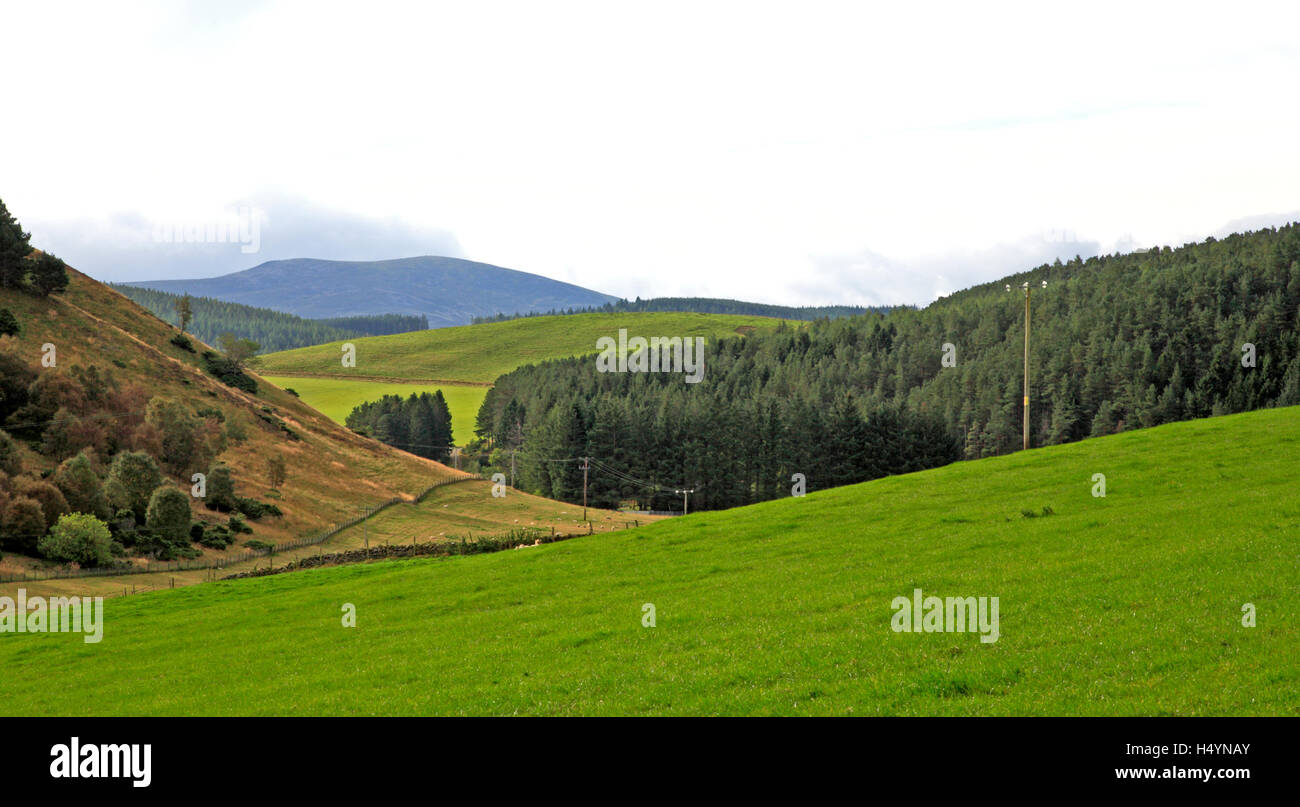 A view of rolling foothills at the edge of the Grampian Mountains at Glen Buchat, Aberdeenshire, Scotland, United - Stock Image
