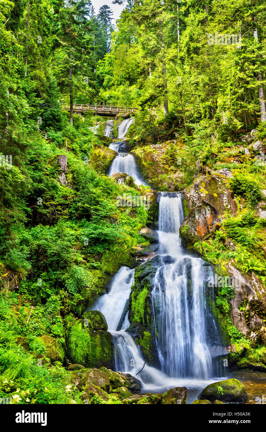 Triberg Falls, one of the highest waterfalls in Germany - the Black Forest region - Stock Image