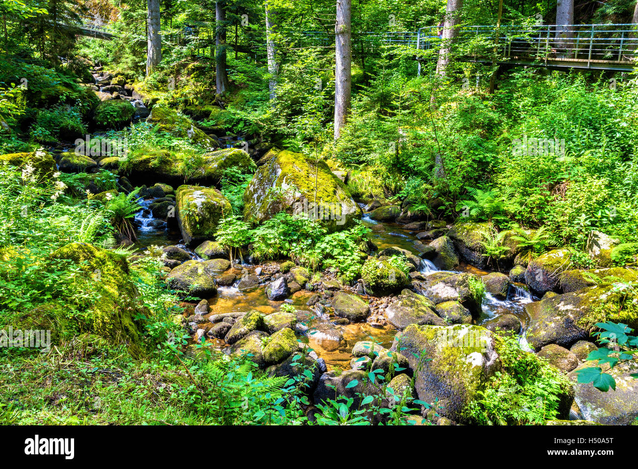 The Gutach river at the foot of Triberg Falls in Germany, Baden-Wurttemberg - Stock Image