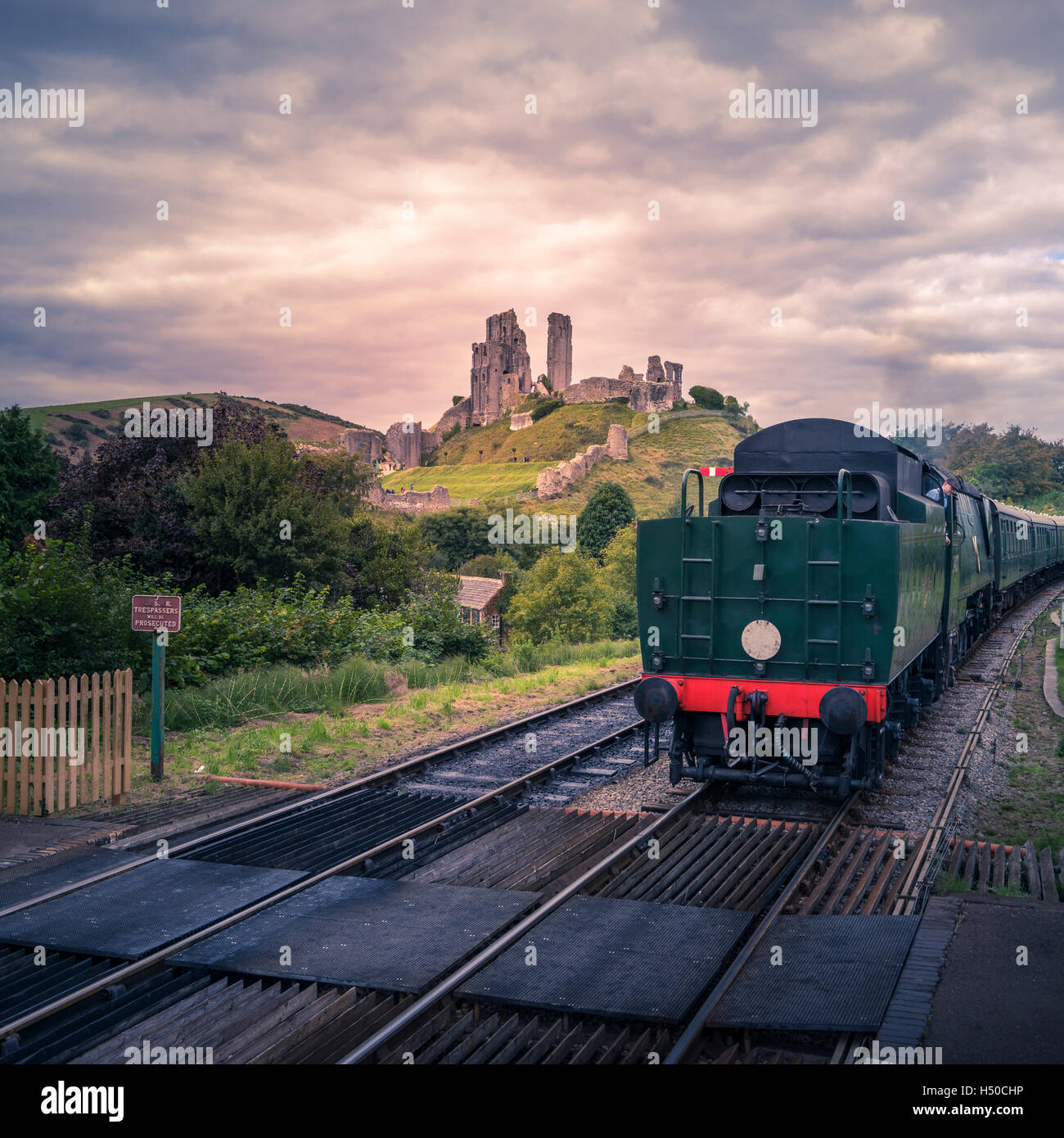 TRAIN AT CORFE  CASTLE - Stock Image