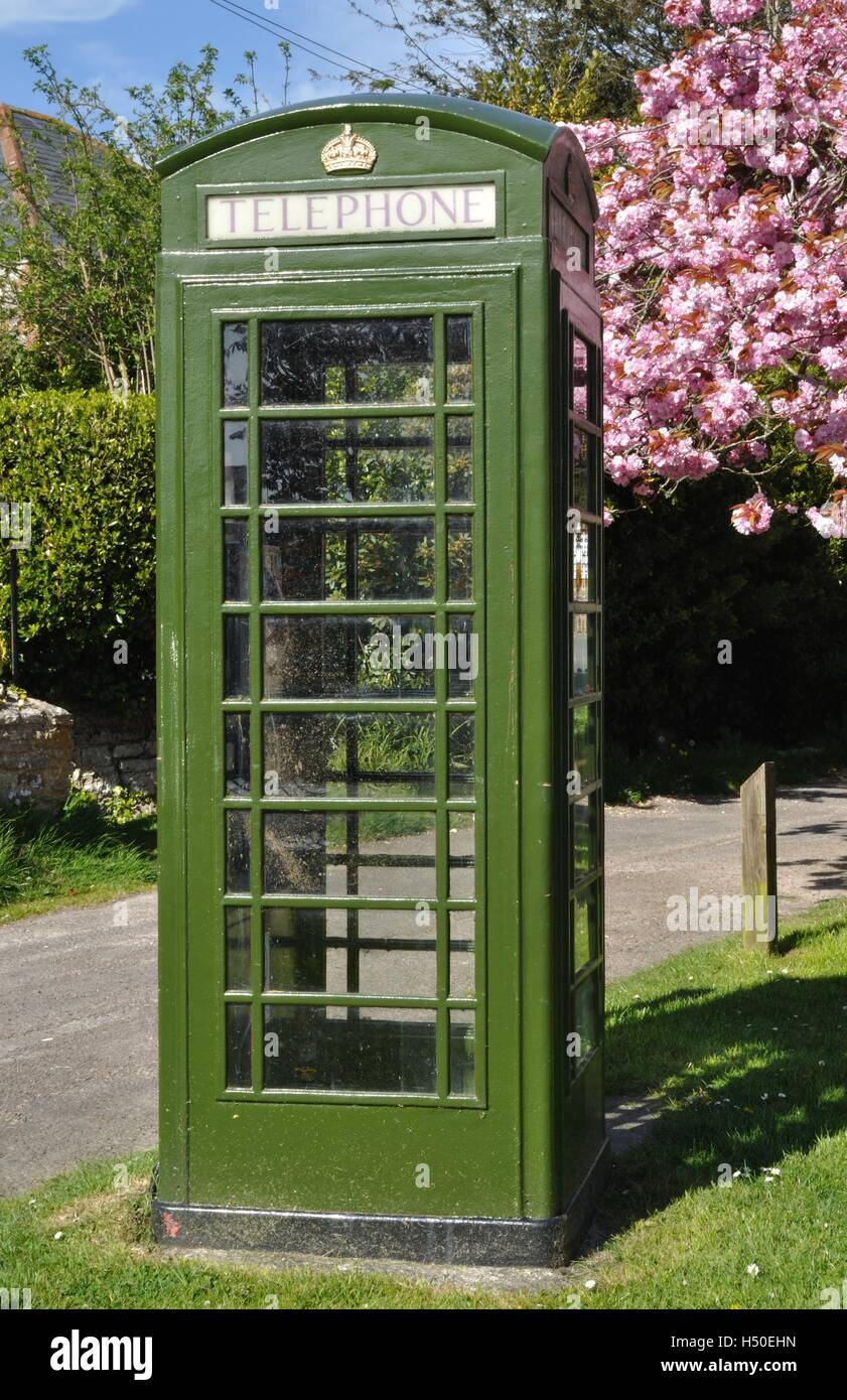 Green K6 telephone box in Portesham, Dorset, with part of a cherry blossom tree behind. Stock Photo