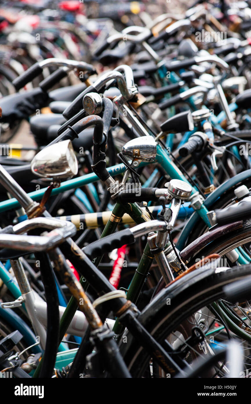 Detail of many bicycles in Amsterdam Netherlands - Stock Image