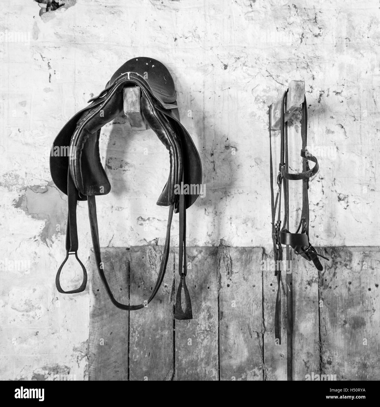 Old saddle and bridle hanging in a stable - Stock Image