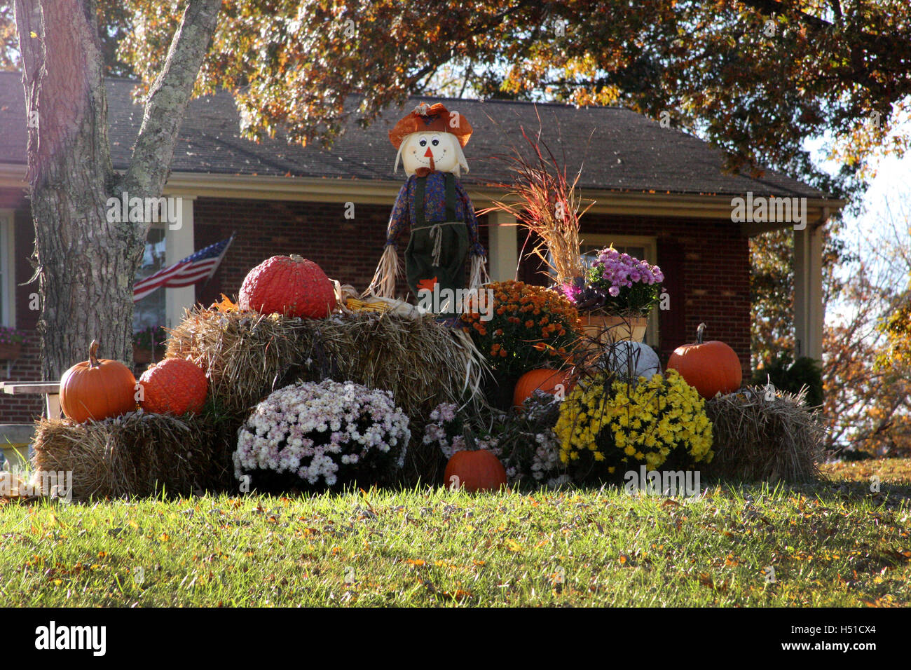 Outdoor Fall Decoration With Scarecrow Pumpkins Hay And Mums Stock