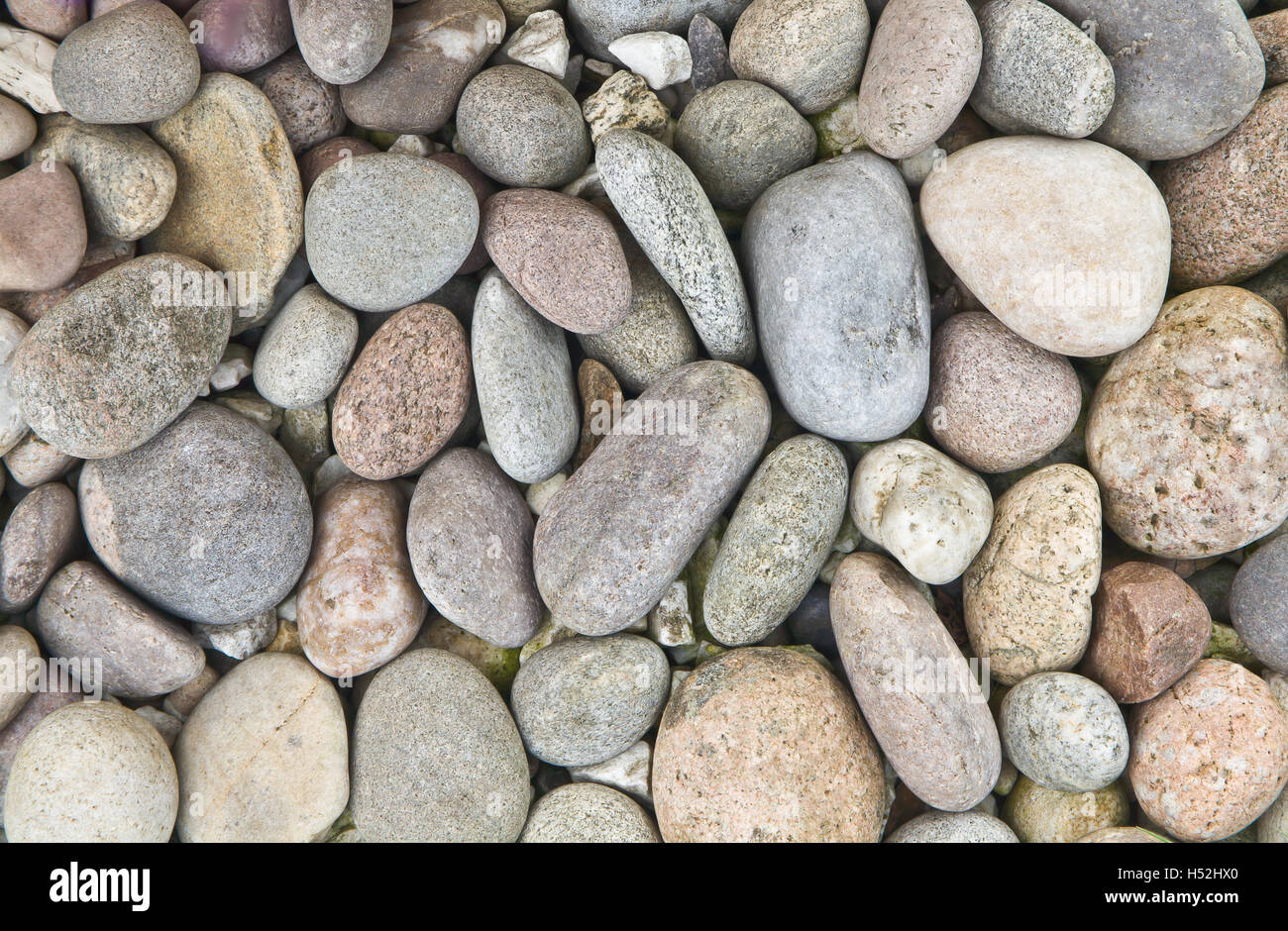 Pebbles of muted and unified tones and muted colours. - Stock Image