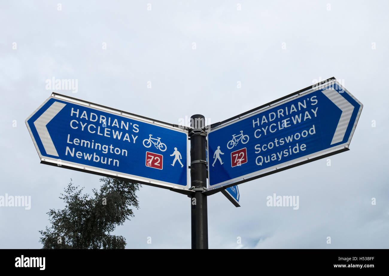 Sign showing direction on Hadrian's Cycleway, one of the most popular coast to coast cycle routes in England. - Stock Image