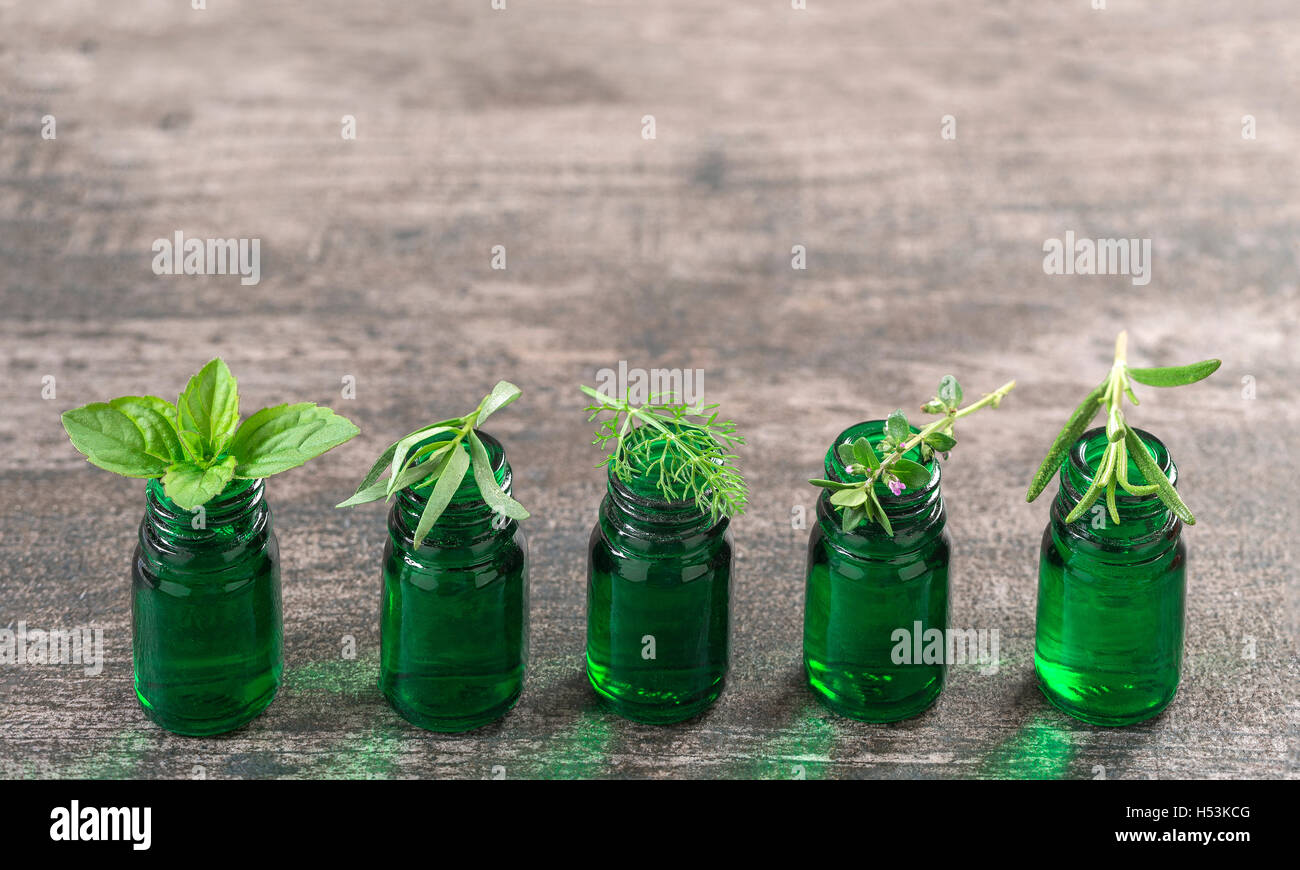 Green Bottle of essential oil with Fresh herbs and medicinal plants - Stock Image