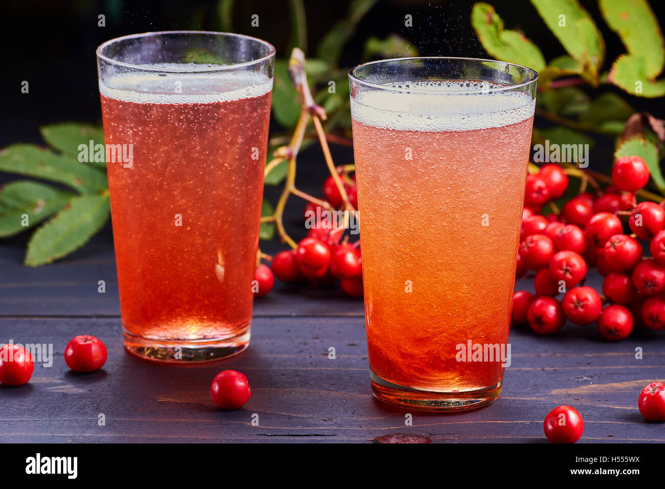 Two glasses of carbonated drink with rowan syrup - Stock Image