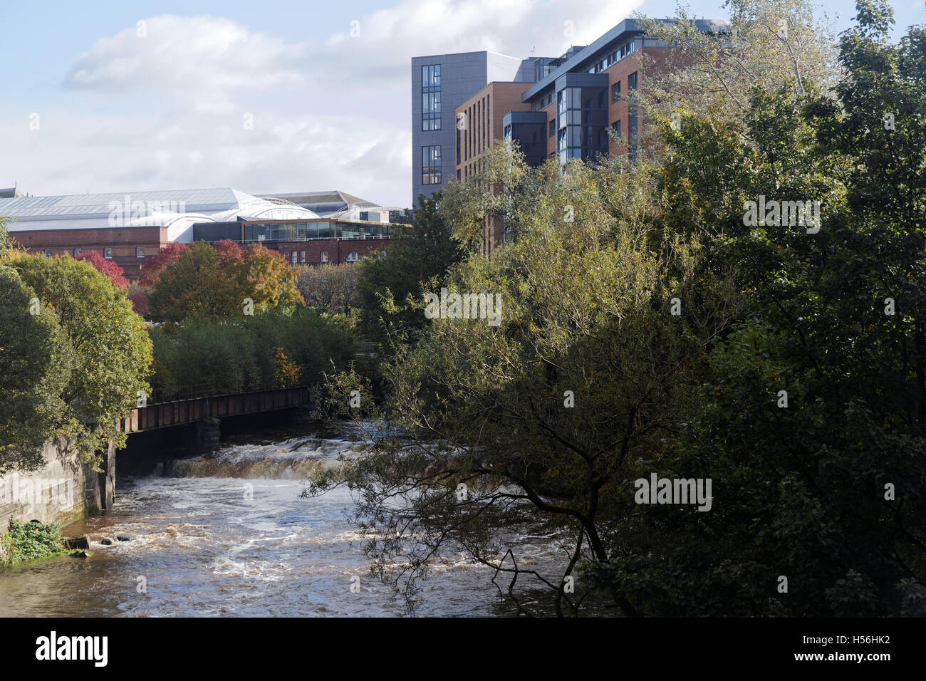 Kelvin River at Partick Glasgow looking North on Benalder Street bridge - Stock Image