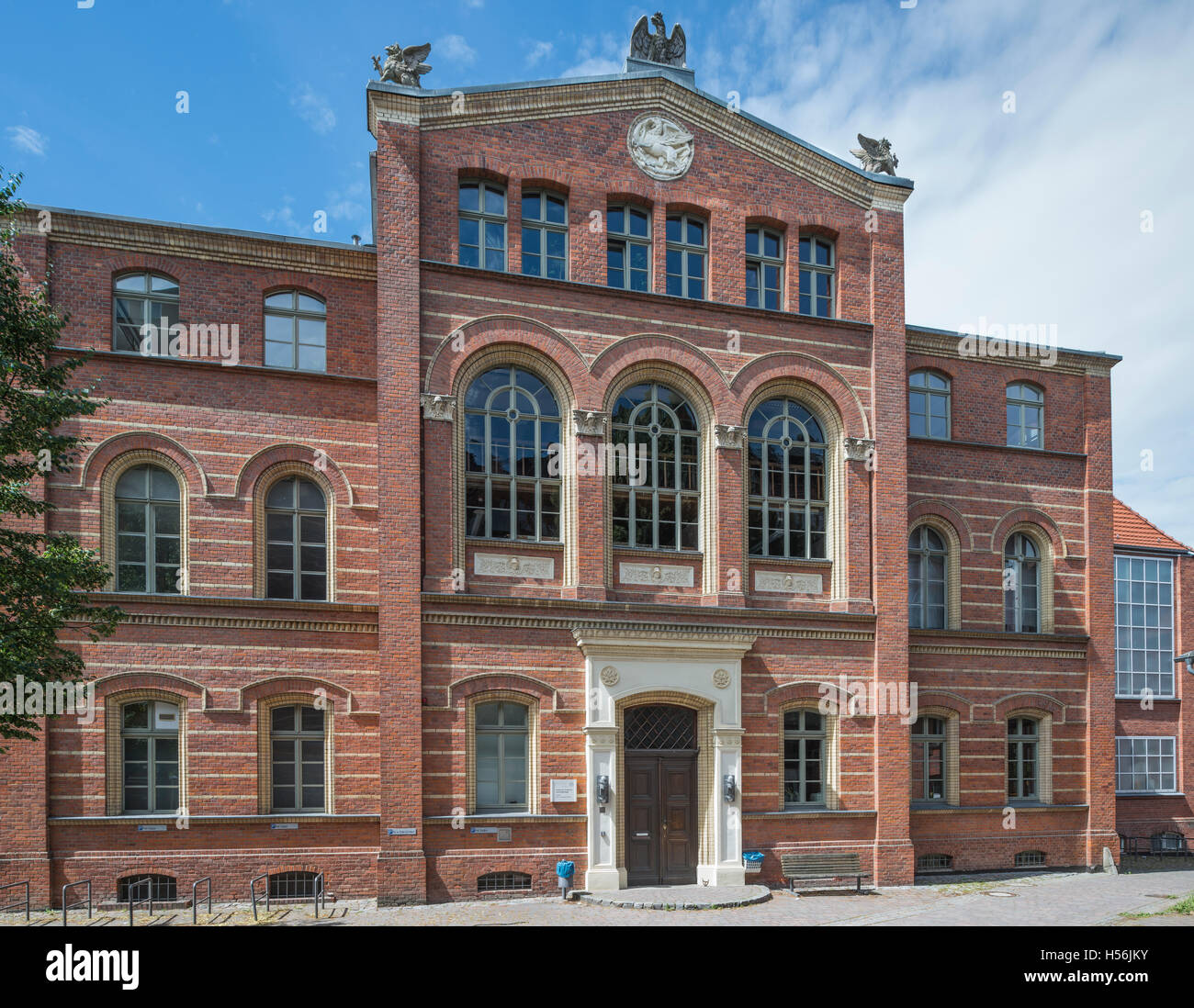 University of Greifswald, Institute of Anatomy and Cell Biology ...