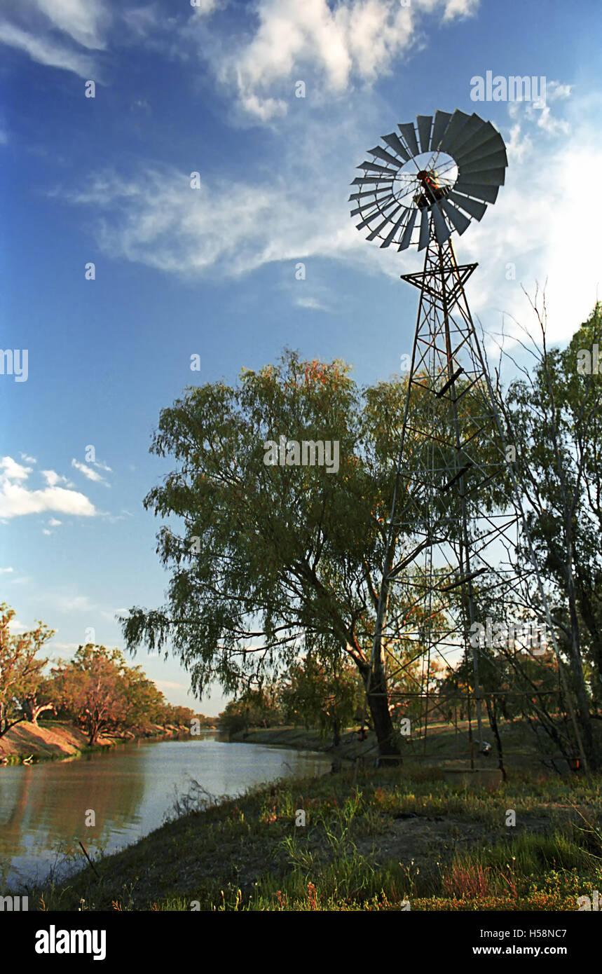 Windpump and gum trees by the river Darling near Bourke in late afternoon sun, New South Wales, Australia - Stock Image