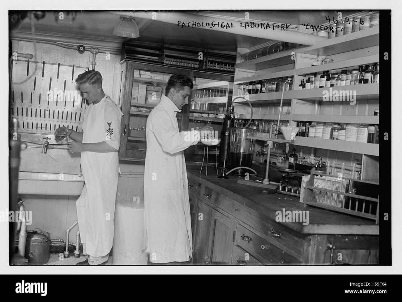 Pathological laboratory - COM - Stock Image