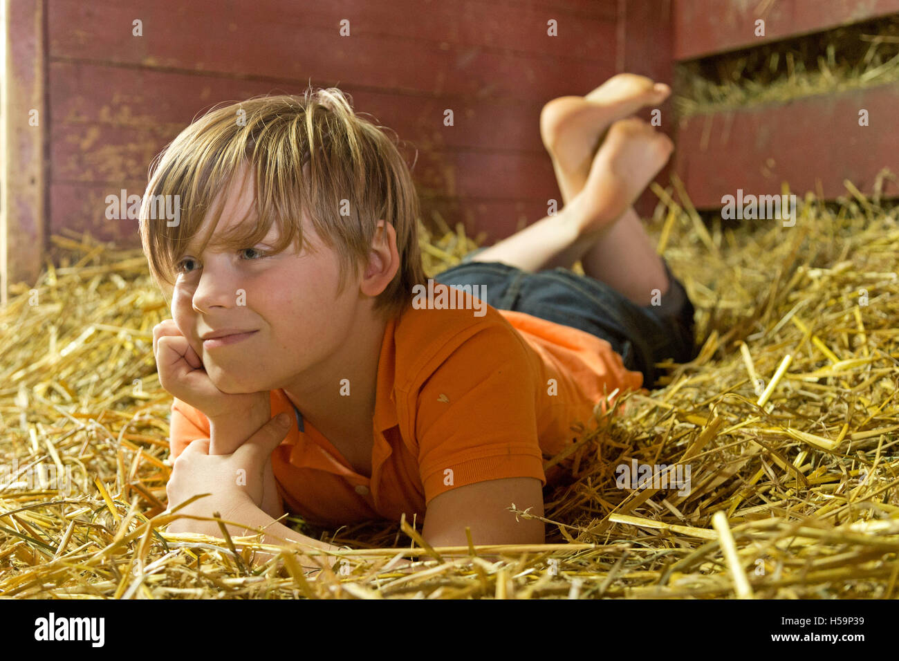 young boy reclining in straw shed, children´s farm Kirchdorf, Hamburg, Germany - Stock Image