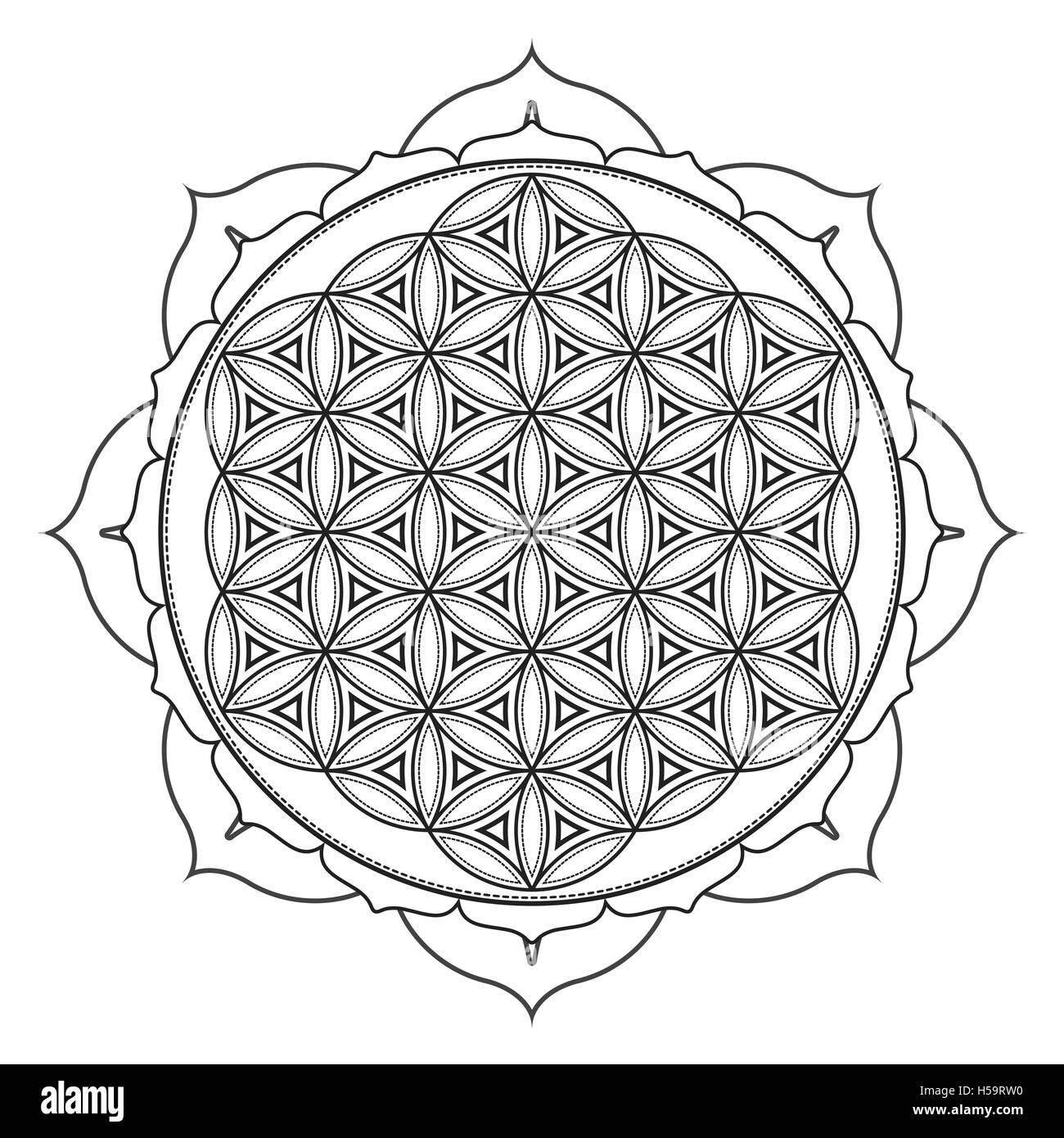 Sacred Geometry Abstract Design Flower Black And White Stock Photos