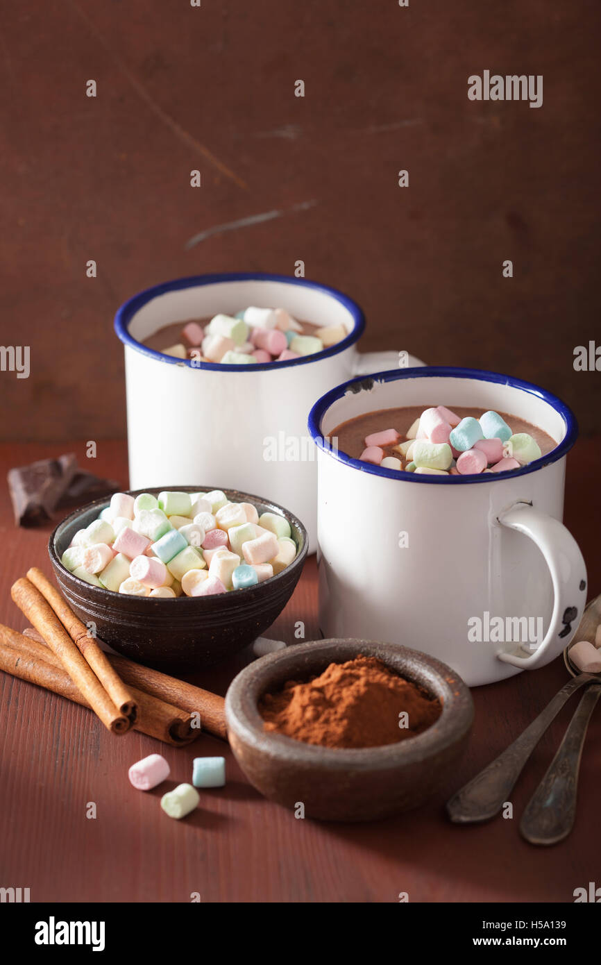 hot chocolate with mini marshmallows cinnamon winter drink - Stock Image