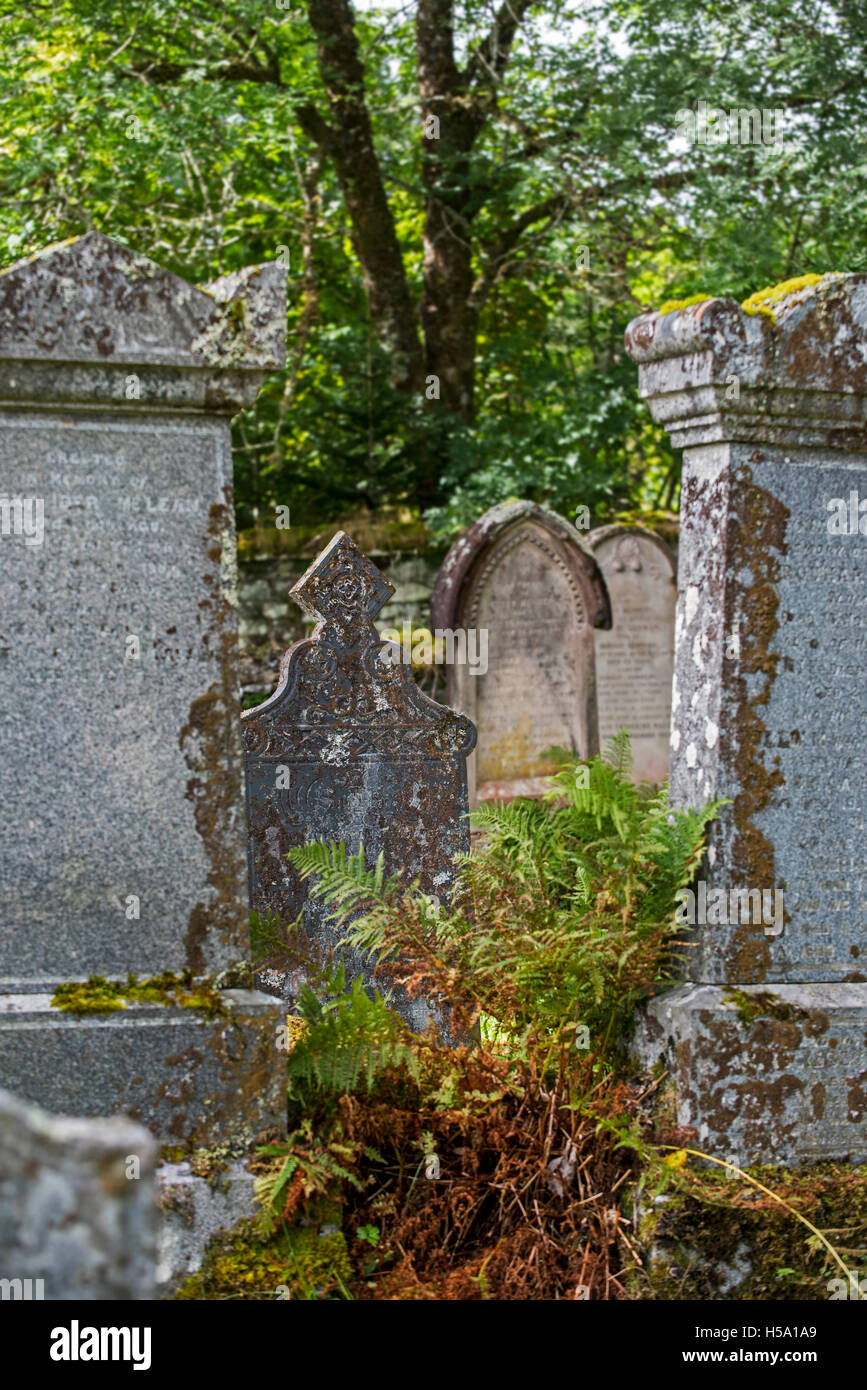 Weathered tombstones in the Lochcarron old cemetery, Wester Ross, Scotland - Stock Image