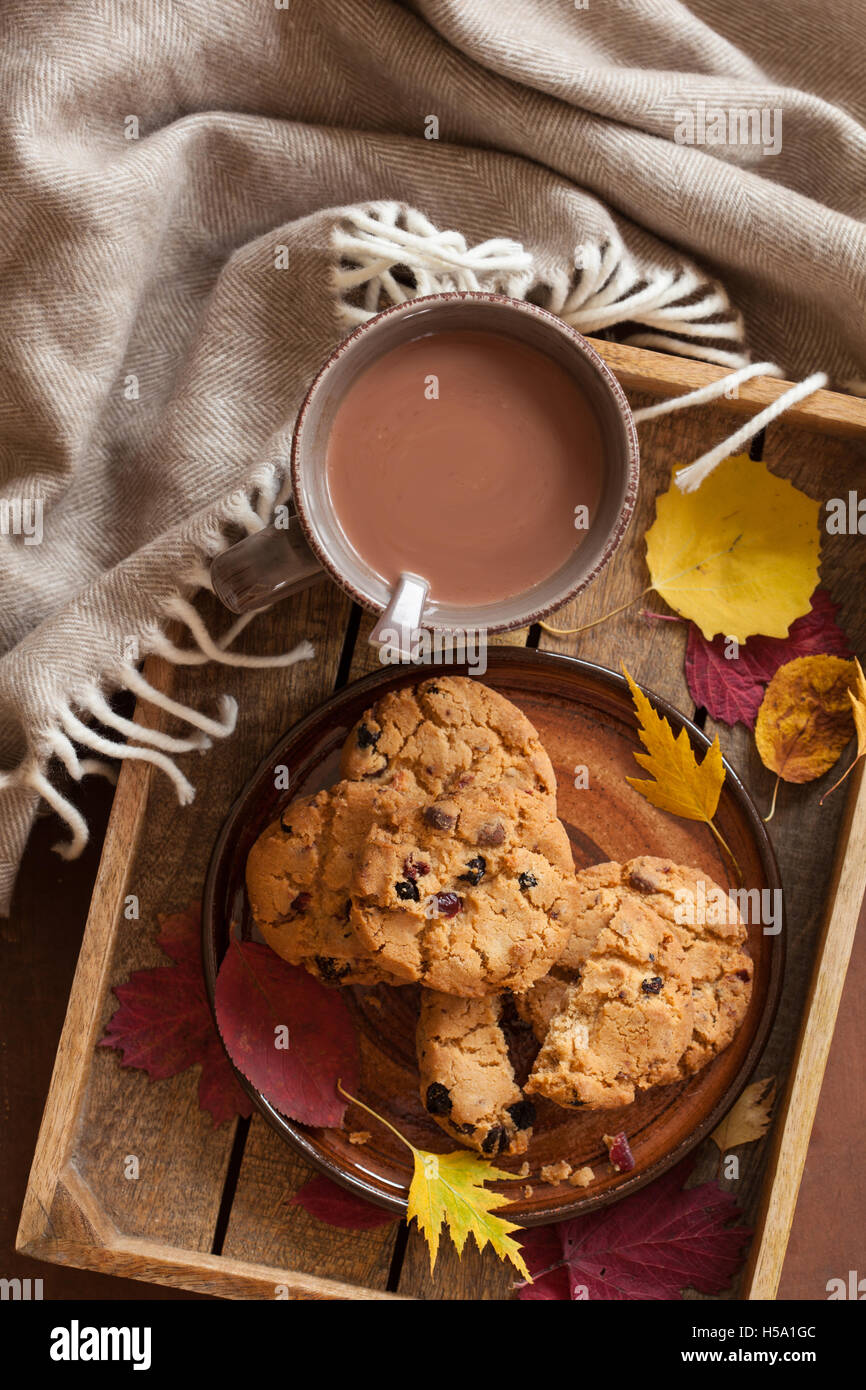 hot chocolate warming drink wool throw cozy autumn leaves cookies - Stock Image