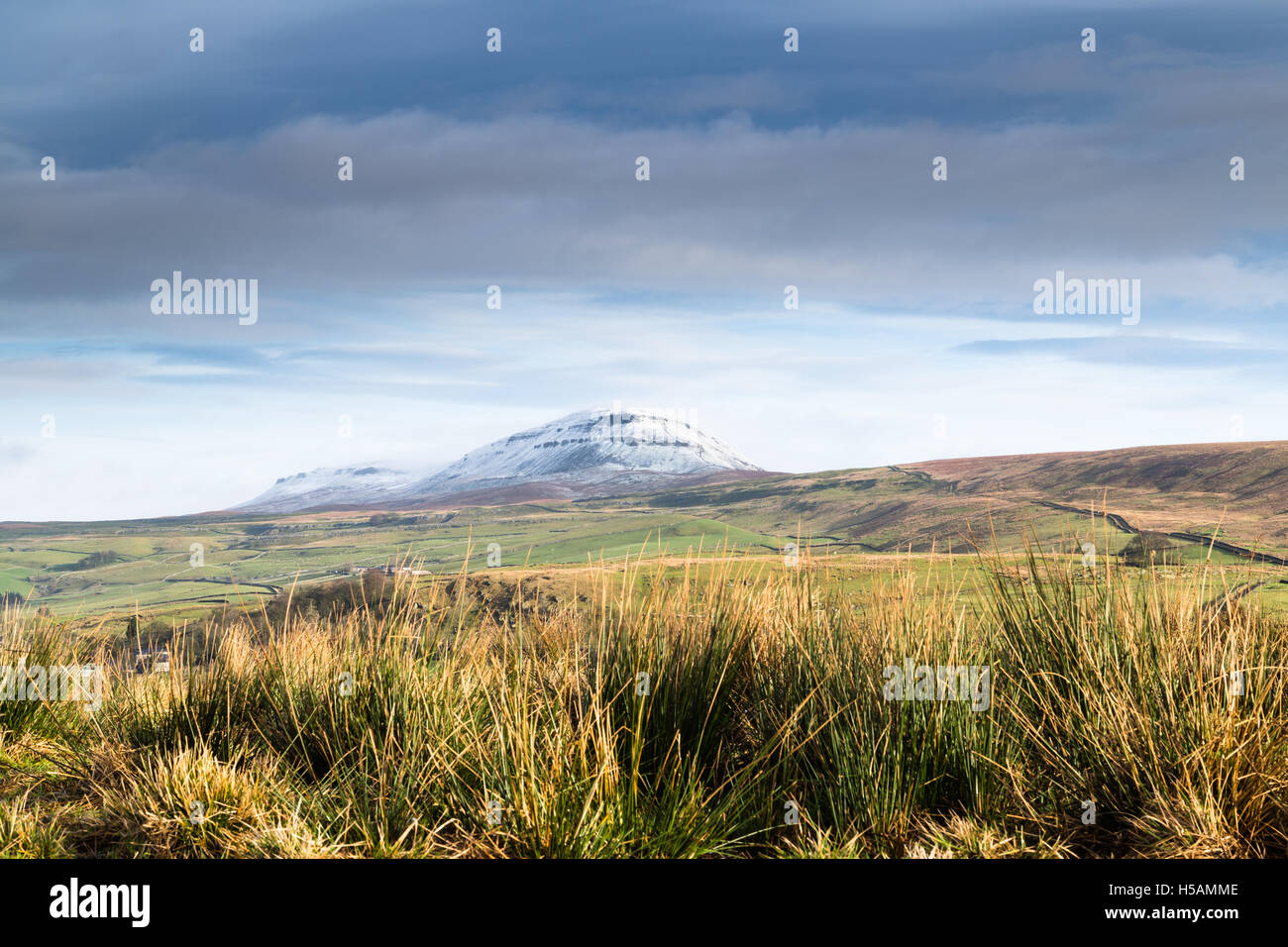 Snow covered Pen-y-ghent, one of the 3 peaks in the Yorkshire Dales National Park, UK - Stock Image
