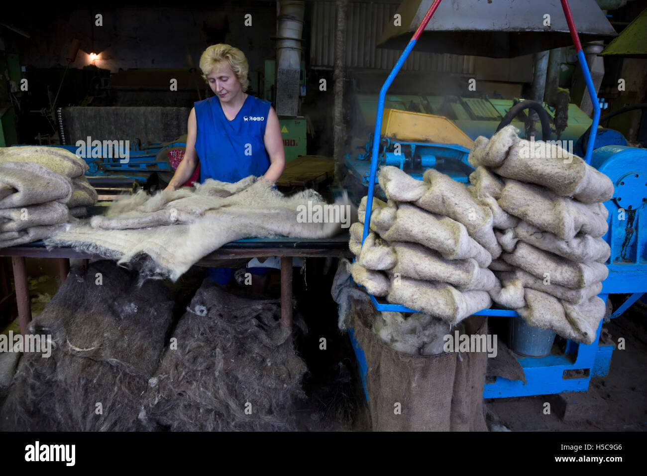 A woman works at a felt-pressing machine in Yaroslavl milled footwear factory, Russia - Stock Image