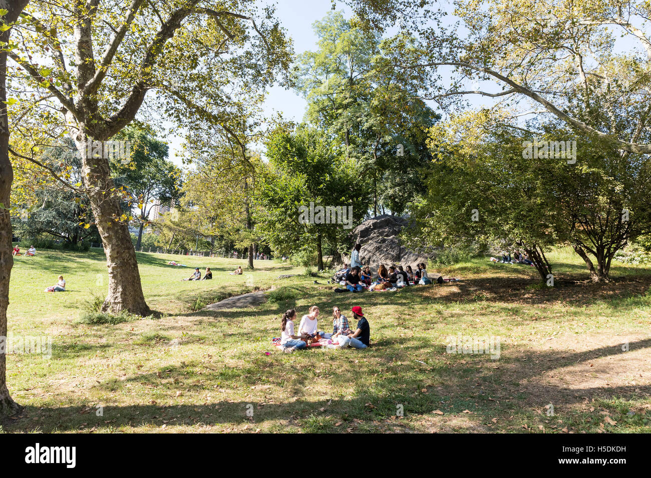 Young people having a picnic in Central Park New York City - Stock Image