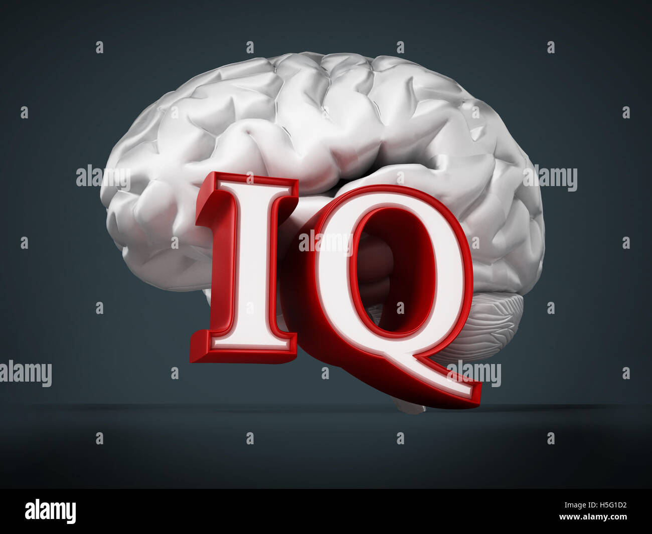 Human brain and IQ word on black background. 3D illustration. - Stock Image