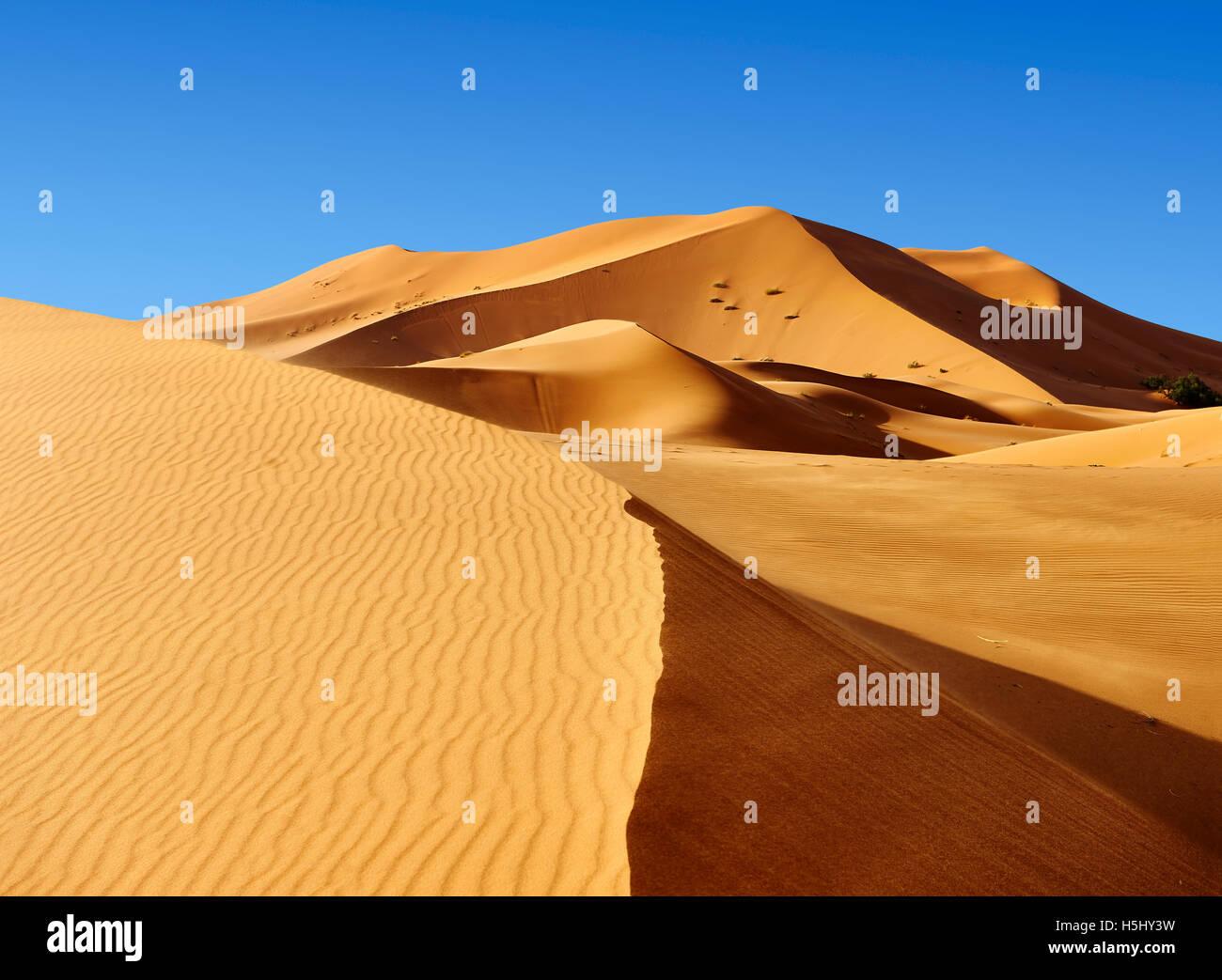 Sahara sand dunes of erg Chebbi, Merzouga Morocco, Africa - Stock Image