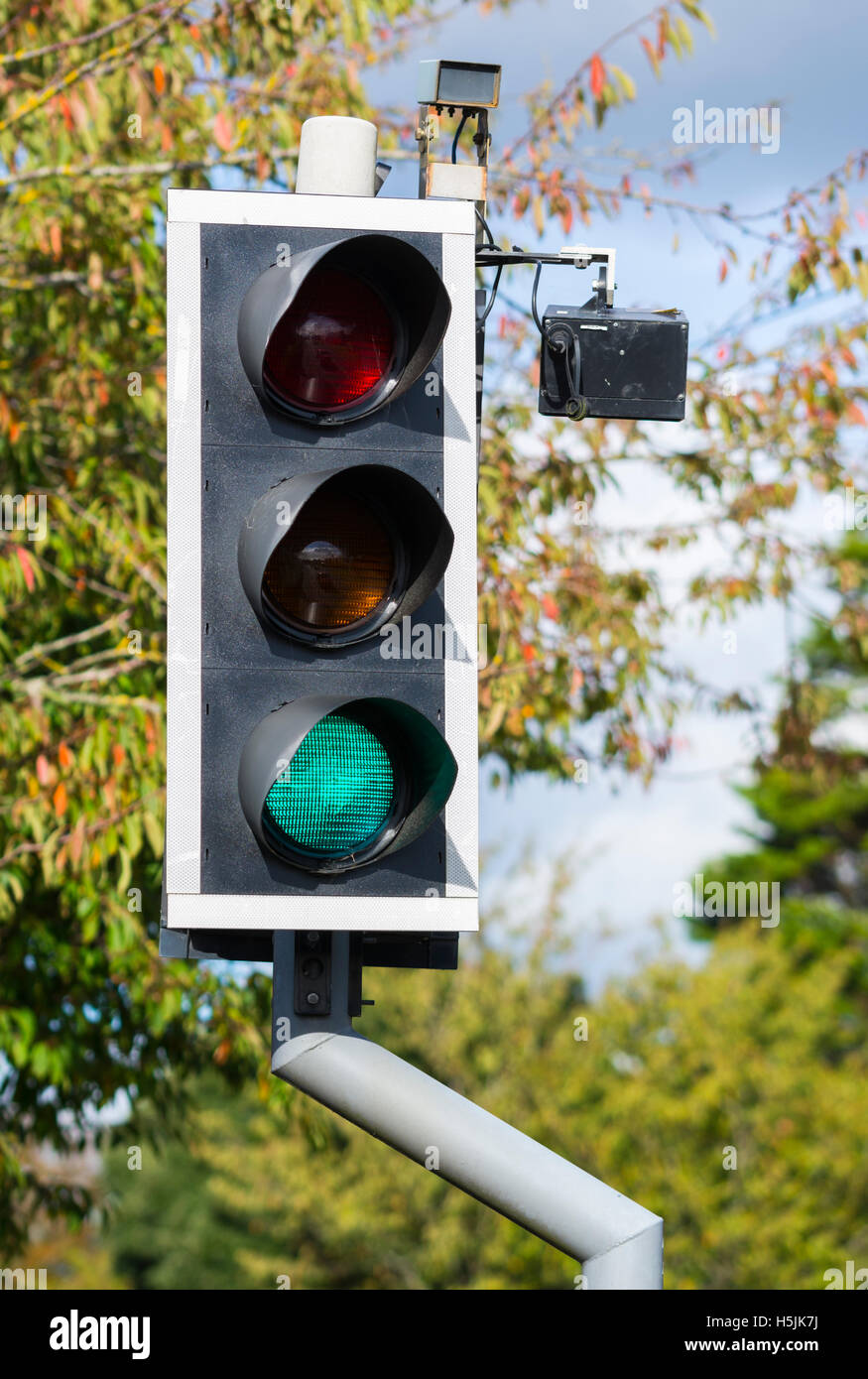 Traffic lights with camera at a pedestrian crossing in the UK. - Stock Image