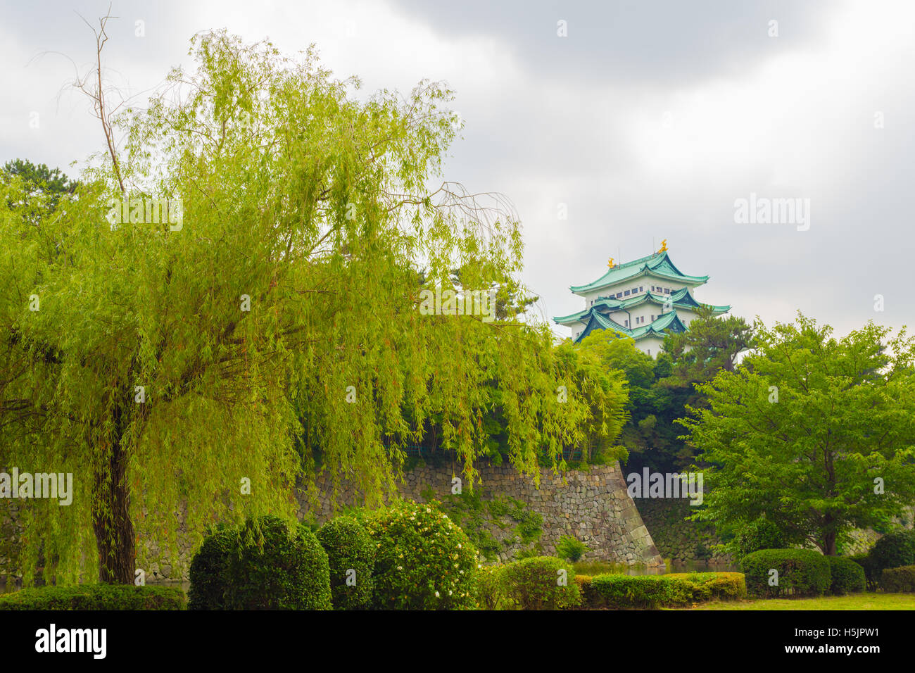 Top of Nagoya Castle visible above treeline and rampart walls on overcast day in Nagoya, Japan - Stock Image