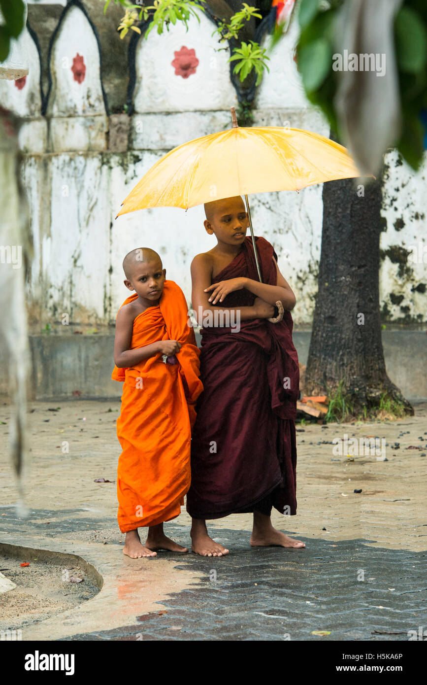 Young buddhist monks carrying an umbrella in the rain, Dimbulagala Buddhist Monastery Near Polonnaruwa, Sri Lanka - Stock Image
