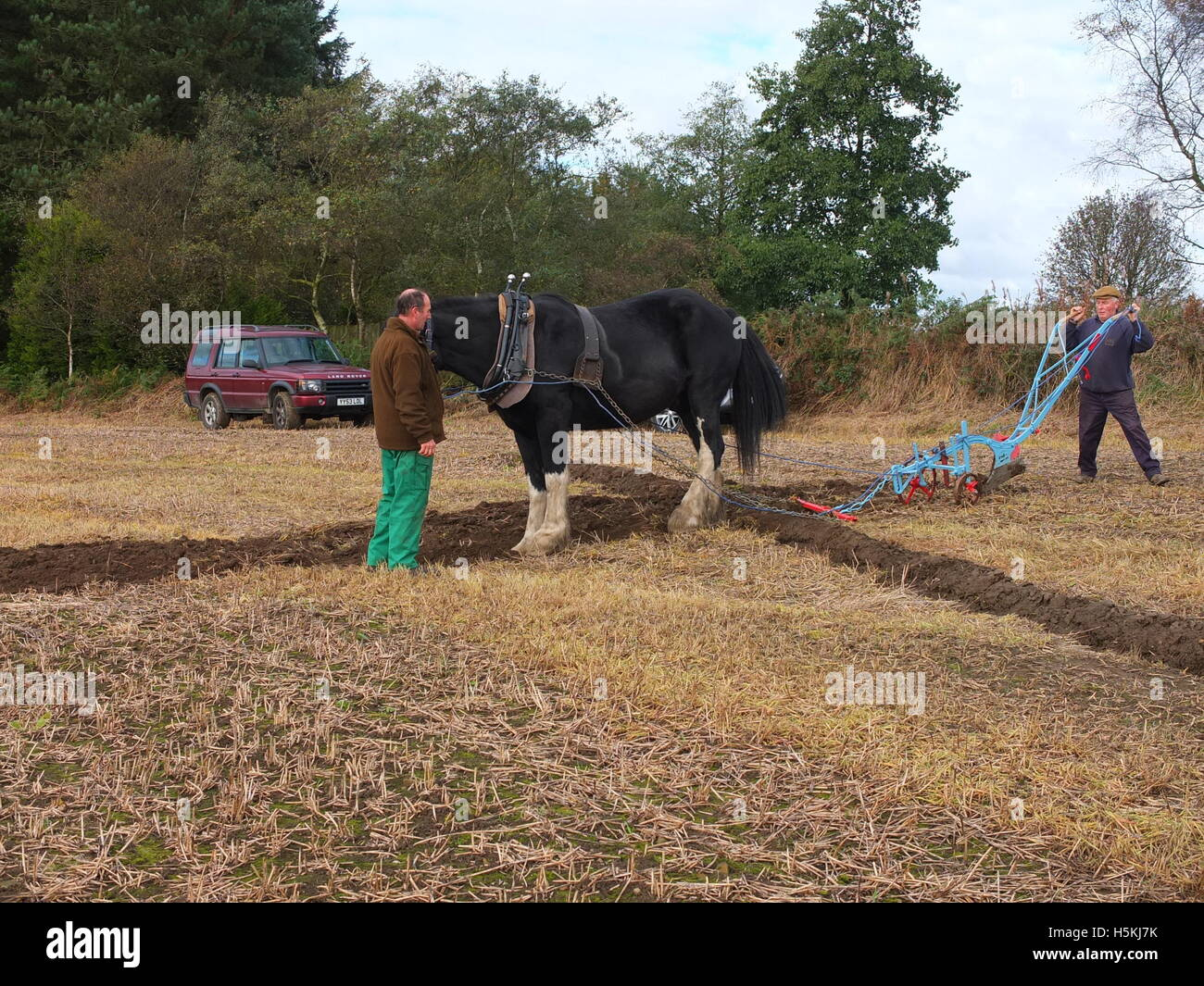 Ploughing the old-fashioned way with horse drawn plough at Ashover Ploughing Match, Highoredish Farm, Ashover. Stock Photo