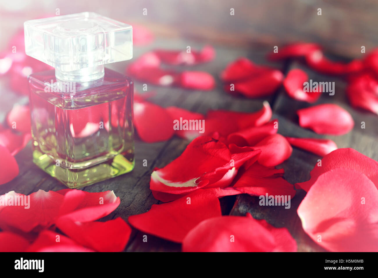 rose perfume bottle and petal - Stock Image