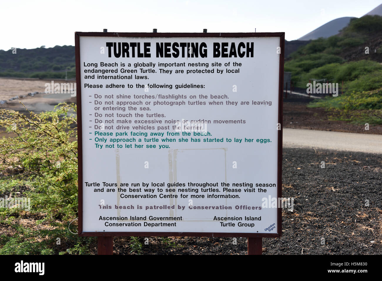 Guide to correct behavior when observing Green Turtles egg laying on Long Beach on Ascension Island - Stock Image