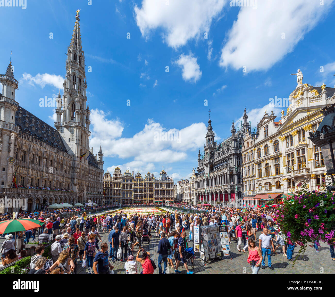 The 2016 Carpet of Flowers in the Grand Place (Grote Markt) with the Town Hall to the left, Brussels, Belgium. Stock Photo