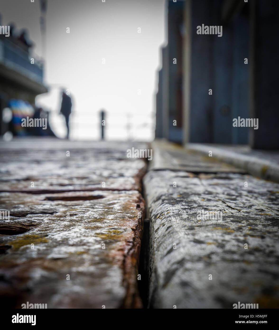 rusty deck crack with rivets and moss - Stock Image