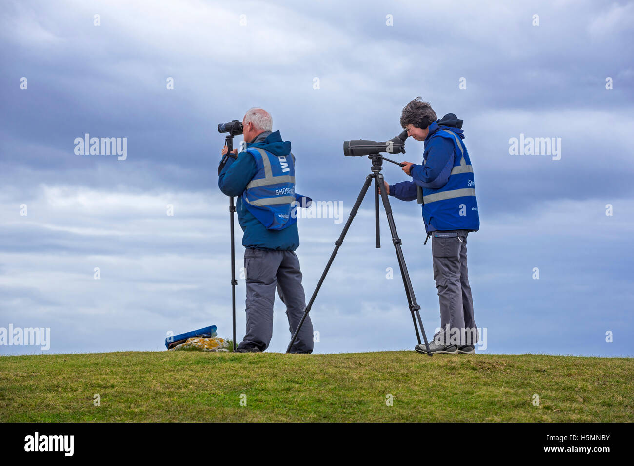 Whale and dolphin watchers looking for marine wildlife at Stoer Head / Stoerhead, Sutherland, Scottish Highlands, - Stock Image