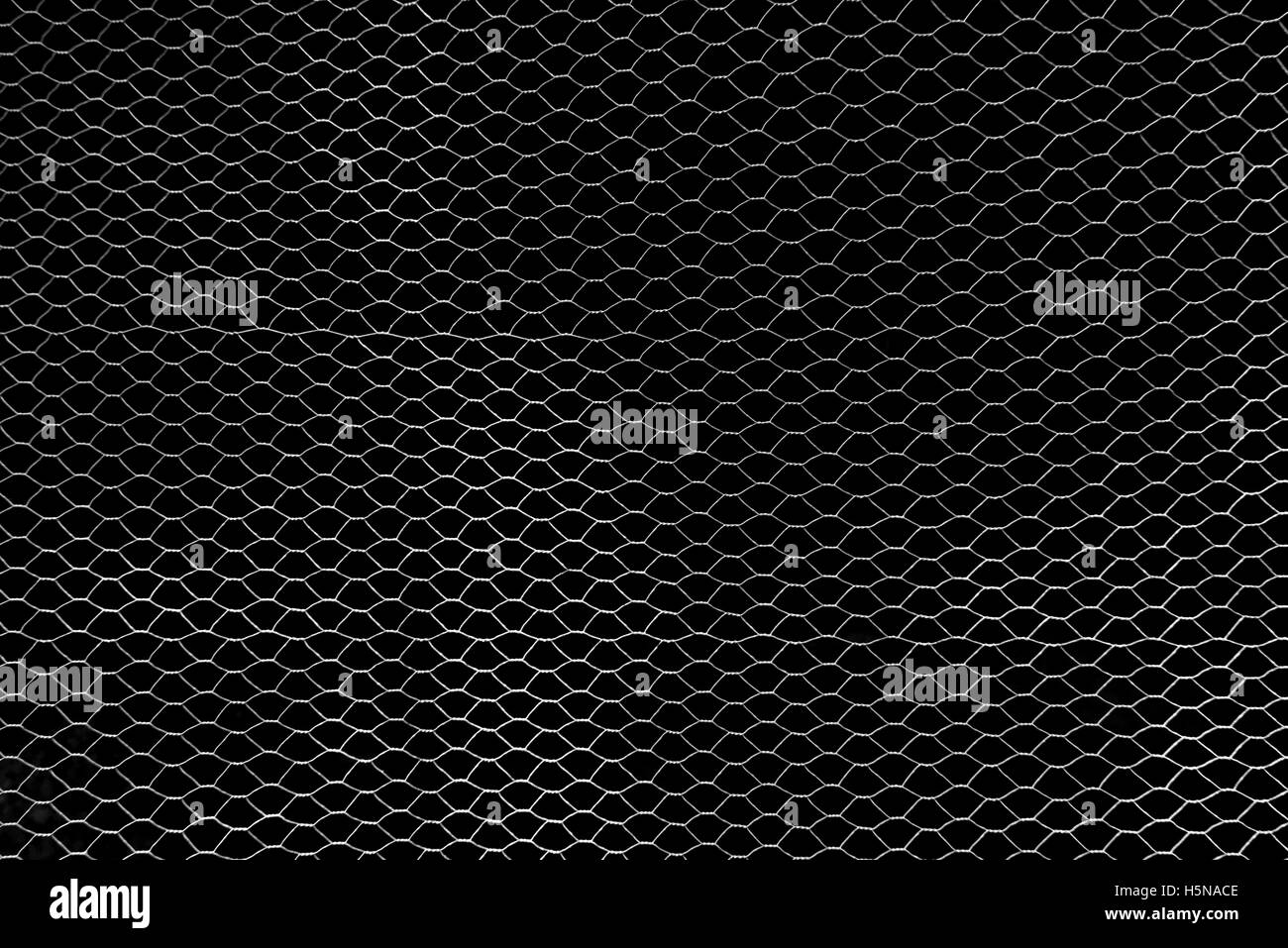 Fine Wire Mesh Stock Photos & Fine Wire Mesh Stock Images - Alamy