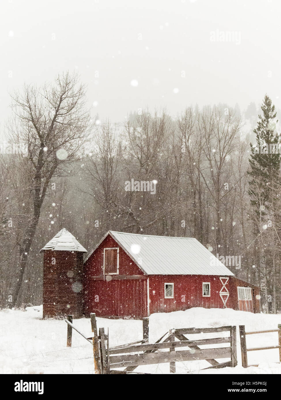 Rustic Old Red Barn In Beautiful Snowy Winter Landscape Twisp Methow Valley Washington State WA